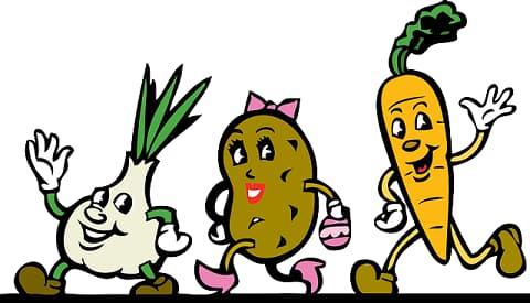 Welcher Diät-Typ sind sie?